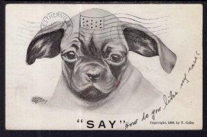 Say Dog Colby Comic BIN