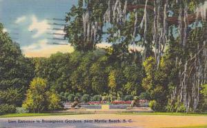 Lion Entrance To Brookgreen Gardens, Near Myrtle Beach, South Carolina, PU-1954
