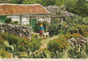 Woman & goat at home , Canary Islands . Spain , 50-70s