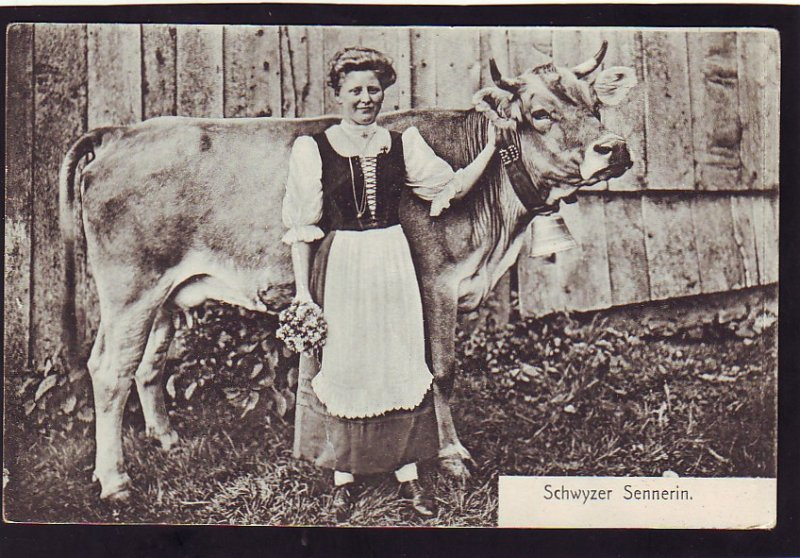 P1389 old unused postcard schwyzer sennerin milk cow bell woman holding flowers
