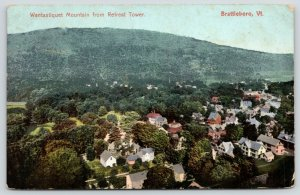 Brattleboro Vermont~Wantastiquet Mountain from Retreat Tower~Homes Below~1907