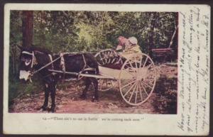 Donkey Cart,Girls Postcard