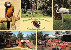 Westerstede Ammertaender Vogel und Landschaftspark Parrot Birds Terrace