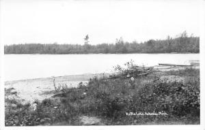 Kalkaska Michigan~Kettle Lake~Drift Wood on Shore~1950s RPPC