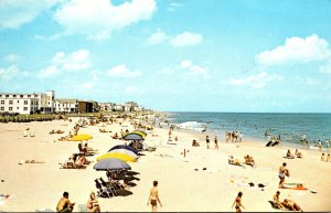 Virginia Virginia Beach Sun Bathers 1972