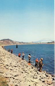 Cape Cod, Massachusetts/Mass/MA Postcard, Fishing For Striped Bass Along Canal