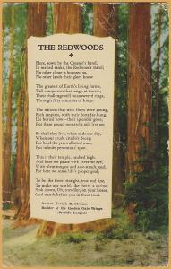 The Redwoods a poem by Joseph B. Strauss, Builder of Golden Gate Bridge