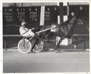 SPORTSMAN'S PARK Harness Horse Race , ANZIO HANOVER winner