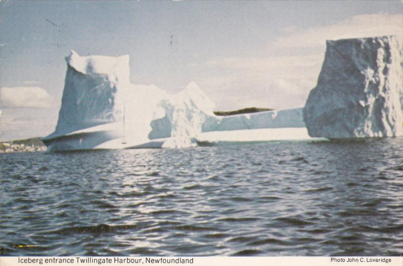 Multi-shaped Iceberg around entrance Twillingale Harbour, Notre Dame Memorial...