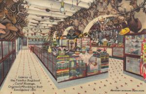 SAN ANTONIO , Texas, 1930-40s ; Interior, Famous Buckhorn Curio Museum