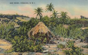 SAN PEDRO, Curacao, Neth. W. Indies , PU-1939; Local Hut