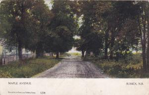 Maple Ave., Sussex, N.B., Canada, PU 1905