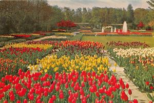 Netherlands Keukenhof Lisse Holland Tulips Flowers Fountain ..