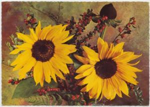Flowers, painting, 1976 used Postcard