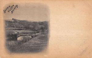 Sussex Valley New York River Bridge Scene Antique Postcard K11646