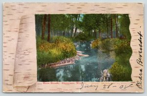 Shawano Wisconsin~Rose Brook~Birch Bark Peel Back~1908 Postcard