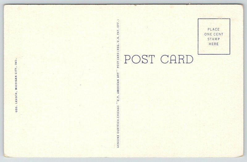 Michigan City Indiana~Lake MI State Park~Autumn in Sand Dunes~191 Linen Postcard