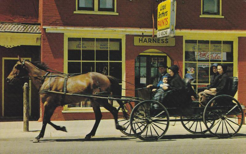 Mennonie Family , Main Street , KITCHENER , Ontario , Canada , 50-60s