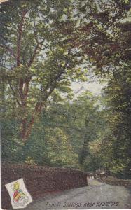 Esholt Springs, Near BRADFORD (Yorkshire), England, UK, 1900-1910s