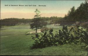Bermuda Belmont Manor Golf Course Hand Colored Postcard #4