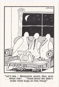 Far Side by Gary Larson Birds Checking Out The Pizza