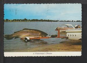 Exaggerated Fish on Trailer Postcard