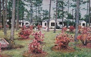 Florida Miami Chief Tomochichi Modern Cottages And Restaurant