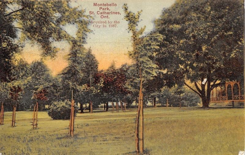 St Catharines Ontario~Montebello Park~Staked Young Trees~1907 Postcard
