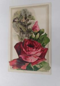 Birthday Greetings Roses Fold Out Booklet Winsch Klein Antique Postcard J74111