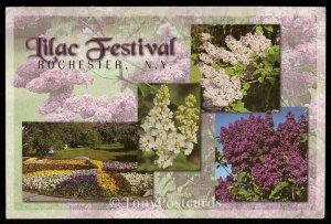 Lilac Festival