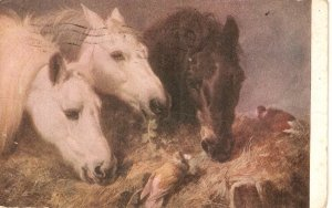 Winstone. Three Horses. Frugal Meal Nice vintage Italian postcard