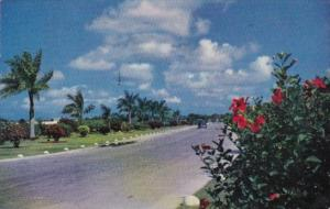 Bahamas Nassau Highway To The Airport 1956