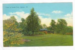 View In South Park,Quincy,Illinois,1900-10s