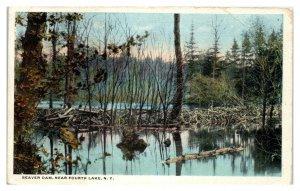 1917 Beaver Dam, Fourth Lake, NY Postcard *5N(3)30