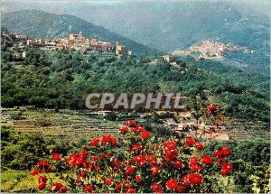 Modern Postcard Isola d'Elba Poggio and Marciana and the valley with its houses