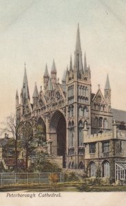 PETERBOROUGH , England , 00-10s ; Cathedral