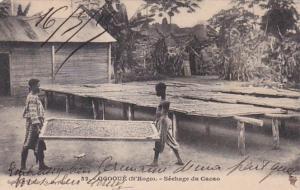 French Equatorial Africa Gabon Ogooue Sechage du Cacao