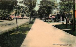 Hot Springs Arkansas~Promenade~Bath House Row~Trees Lining Street 1910 Postcard