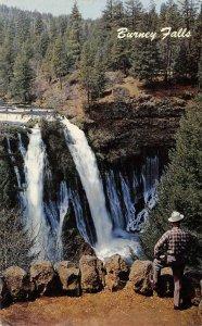 BURNEY FALLS Northern California Waterfalls c1950s Chrome Vintage Postcard
