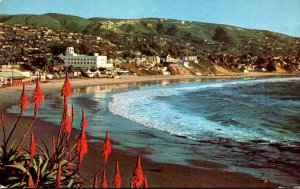 California Laguna Beach At Christmastime Beach Scene 1956