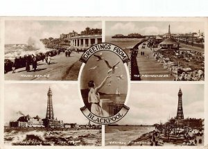 Greetings from Blackpool Rough Sea Central Promenade Birds Postcard