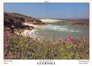 Guernsey Postcard Belvoir Bay, Herm Channel Islands by D.R Photography P51