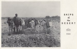 RP: Miner & Donkeys , Ships of the Desert , 1930-40s