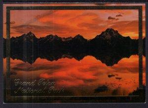 Grand Teton National Park,WY BIN
