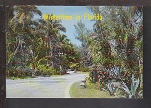 Wintertime in FL Postcard BIN