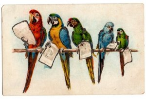 072221 COLORFUL PARROTS ON BRANCH HOLDING PAPER VINTAGE BIRD POSTCARD CIRCA 1910