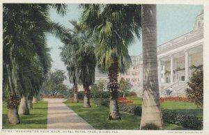 MIAMI  , Florida , 1910s ; Washington Palm Walk , Hotel Royal Palm