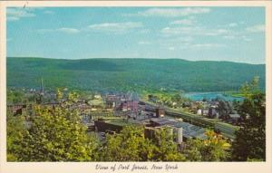 New York View Of Port Jervis and Delaware River Valley