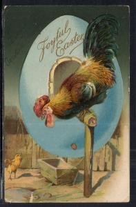 Easter Chicks BIN