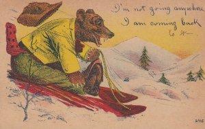 Bear on a sled , 00-10s